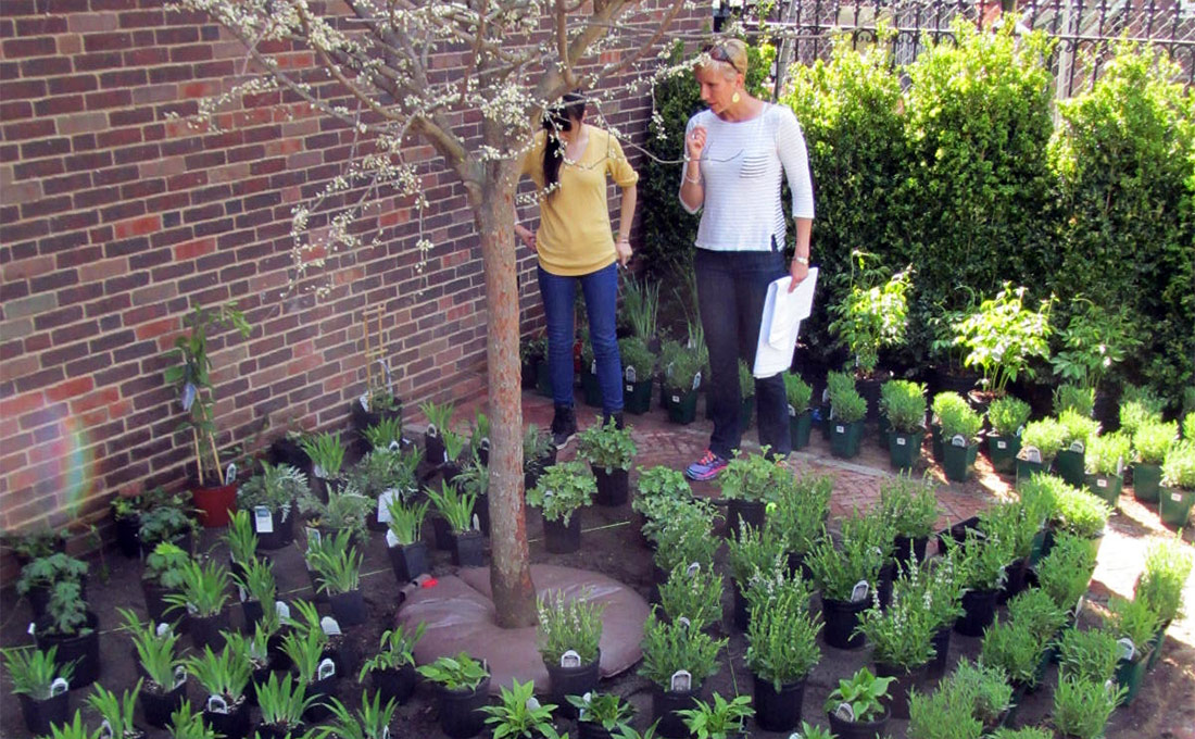 Studio 2112 co-owner Lynne Giesecke discussing plant layout before being planted