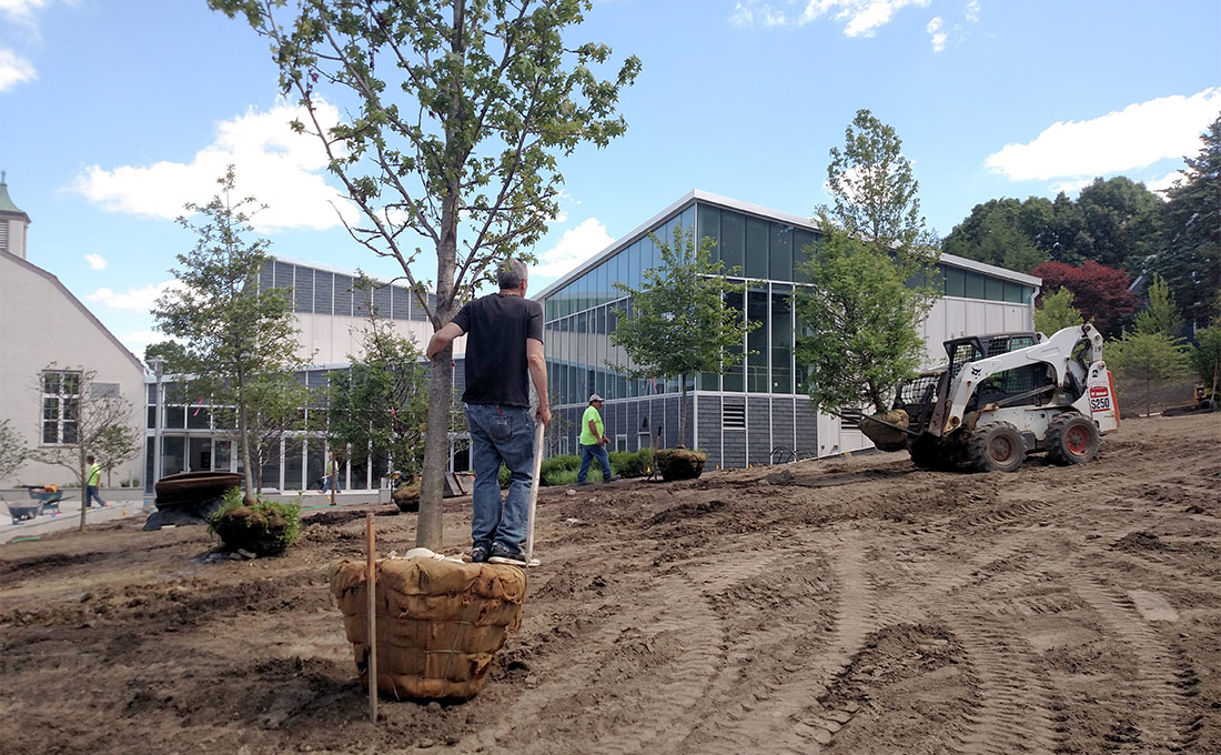 Studio 2112 planting trees with small bobcat